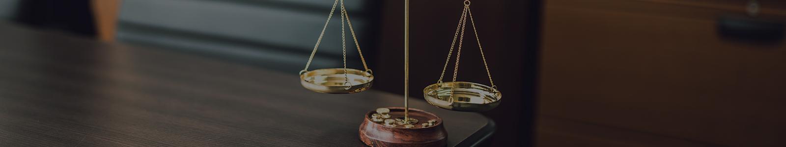 南彦根法律事務所  取扱分野